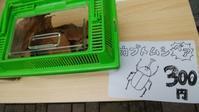【台東区】ものづくり横丁にかぶとむしお兄さん! - 大和雅子の日々、日常のあれこれ