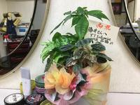 Flower - 雲雀理髪店  -THE LARK BARBERSHOP-