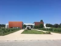 ハンガリー ⑬ モーニングワイン - 一景一話