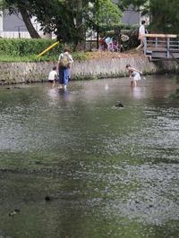 静岡@三島(3)#川と暮らす… - Oh! Photo