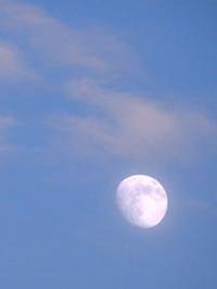 落ちそうな月 - Blue Planet Cafe  青い地球を散歩する
