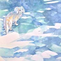 青い鳥。 - 犬の絵、描きます < Eyes of a Dog >
