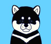 黒柴 - ひとつひとつ