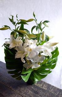 お供え用のアレンジメント。「白の胡蝶蘭を使って」。豊平3条にお届け。2017/08/05。 - 札幌 花屋 meLL flowers