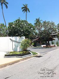 Sala Samui Resort And Spa 1 サムイ島 - Favorite place