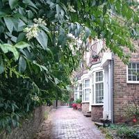 ロンドン旅行記2017:Lewes その3 - On a clear day