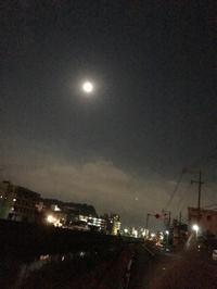 ◯ - ☆カバトリコ