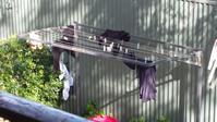 洗濯物の行方 - アデレードの片隅で2