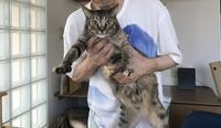 ペガ男の過激な愛 - ご機嫌元氣 猫の森公式ブログ