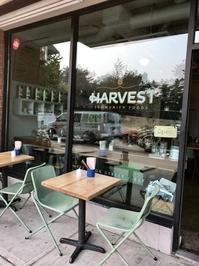 ビーガンのヌードルをトライしてみました(@Harvest Community Foods) - バンクーバー日々是々