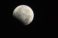 月食と幼子の首 - 写真家 田島源夫ブログ『しゃごころでっしゃろ!』