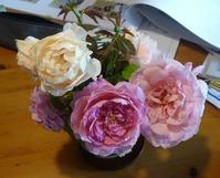 夏薔薇 - hibariの巣