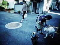 それぞれ - 音舞来歩(IN MY LIFE)