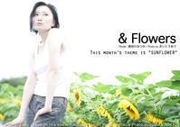 今月の『&Flowers』は大雨だわひまわり下向いてるわ泥だわで、動揺したらうっかり白飛びやっちまった - 東京女子フォトレッスンサロン『ラ・フォト自由が丘』-写真とフォントとデザインと-