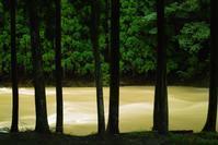 台風一過・・・朝は雨、昼から青ゾラ - 朽木小川より 「itiのデジカメ日記」 高島市の奥山・針畑郷からフォトエッセイ