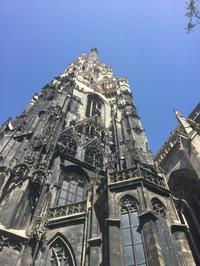 ウィーンの話 その3  シュテファン大聖堂の南の 塔に昇る - L'art de croire             竹下節子ブログ