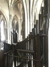 ウィーンの話 その6  シュテファン大聖堂の地下墳墓 - L'art de croire             竹下節子ブログ