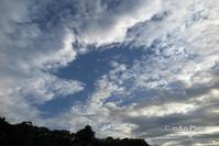 台風がくれた青空 - 季節のおくりもの