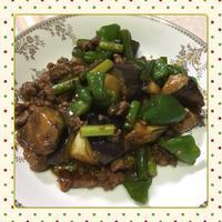 茄子とピーマンのピリ辛そぼろ味噌炒め(レシピ付) - kajuの■今日のお料理・簡単レシピ■