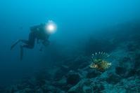 1対1 - Diving Life ~Aita pe'a pe'a~