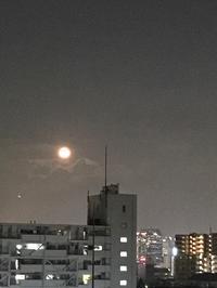 満月 - おうちやさい
