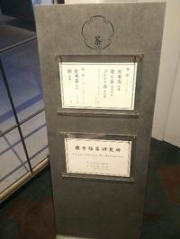 櫻井焙茶研究所で一服 - a day in my life