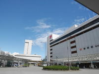 静岡の記憶 - 水草新世界