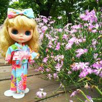 ルナちゃん浴衣でお出かけ2 - T's Photo Diary2(Grass Field*)