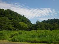 夏のスペシャルウィーク・さとの夏遊びスタート - 千葉県いすみ環境と文化のさとセンター