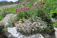 思い出の山と宿は今、イタリア アブルッツォ - イタリア写真草子 - Fotoblog da Perugia