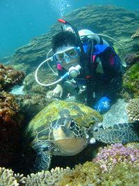 カメとのツーショットも‥撮りまくり♪ - 八丈島ダイビングサービス カナロアへようこそ!
