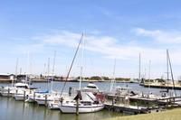 静かな港町、コットンフィールド ~初めての釣り旅行② - ころころまるしぇ