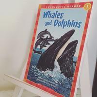 """あじさいお勧めの絵本 """"Whales and Dolphins"""" - おやこ英語絵本の会 「あじさい」"""