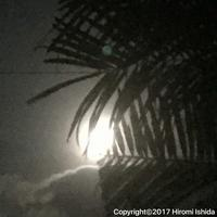 南の島から見る満月 - 西表島の石やんのあれやこれや