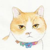 なとちゃんの似顔絵 - まゆみのお絵描き絵手紙