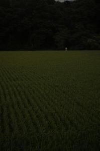 田面の水平線 - 古典派レンズの見る世界