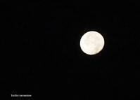 朝の月見 - SUMMER PHOTO