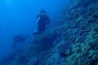 17.8.10 みんなで宜野湾 - 沖縄本島 島んちゅガイドの『ダイビング日誌』