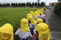 お散歩中♪ - 慶応幼稚園ブログ【未来の子どもたちへ ~Dream Can Do!Reality Can Do!!~】