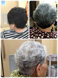 介護老人保健施設 パーマが大人気! - 三重県 訪問美容/医療用ウィッグ  訪問美容髪んぐのブログ