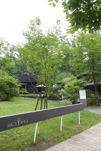 日本一の避暑地・軽井沢① - 月一ブログ4