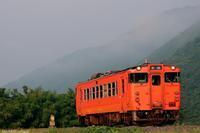 朝靄立ち込める中を。 - 山陽路を往く列車たち