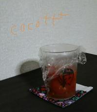 塩トマト - cocott+