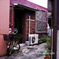京都 旧五条楽園 - mglss studio photography