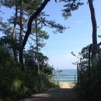 お盆休みをしないので.......本日の日本海 - 山本のなんやこれ!