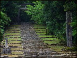 釣行記・・・・のはずが観光記 - 永源寺のなまぐさイワナ