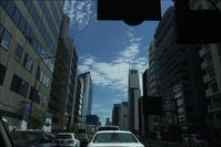 暑い午後を鮫洲の運転免許試験場へ<申請による運転免許の取り消し>に - 生きる歓び Plaisir de Vivre。人生はつらし、されど愉しく美しく