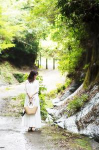 鎌倉リベンジ(3) - ポートフォリオ