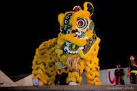 神戸華僑総会 舞獅隊【おいでまい祭り2017】#01 - kawanori-photo
