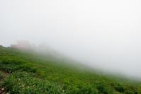 五里霧中 - 一人の読者との対話